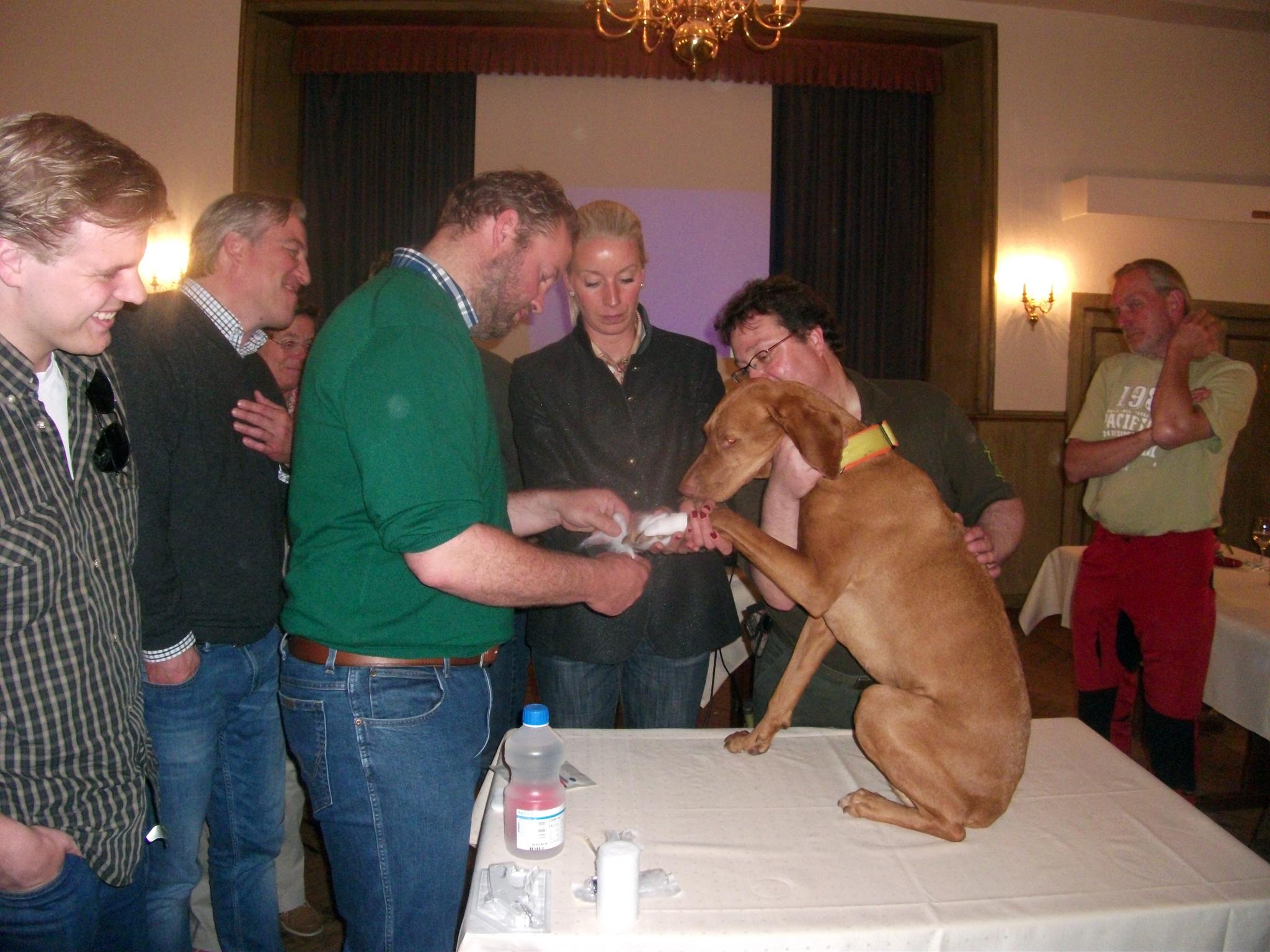Jagdhund_Erste_Hilfe_Seminar_270615_004